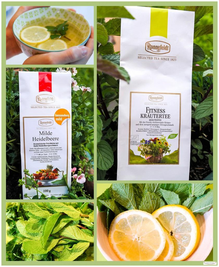 Ronnefeldt Tee, Fitness Kräuter und Milde Heidelbeere