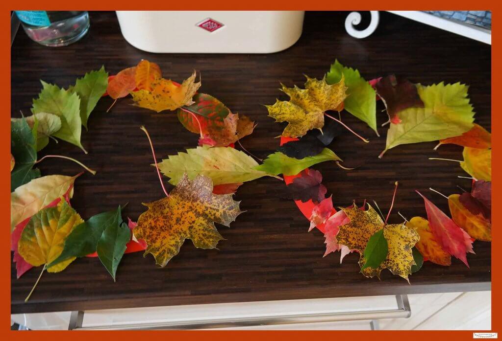 Dekorativ Basteln mit echten Blättern Blätterkranz
